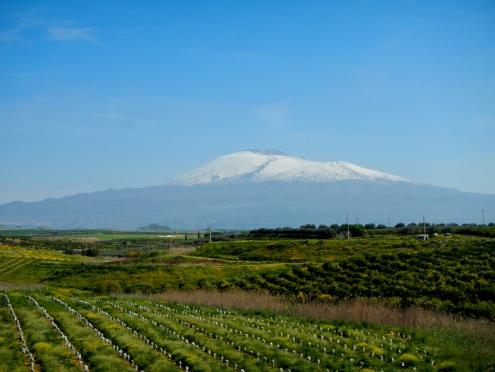 Mt Etna Sicily