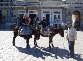 Donkey trip to high point of Island of Hydra