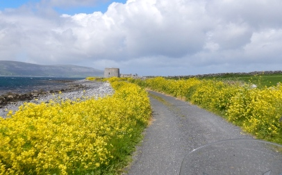 A martello Tower near County Clare - Ireland