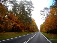 Heading north on highway towards Poland's Masurian Lakes District