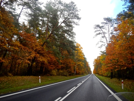 Heading north on highway towards Poland's Masurian Lakes District