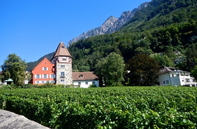 The beautiful Vaduz vineyard