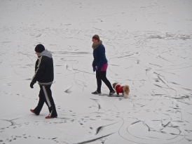 Walking on the Vistula river - see the toboggan tracks
