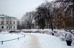No one using the benches near Krasiński Palace today - very pretty none the less