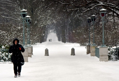 Lazienki Park walkway covered in snow