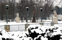 Just a lovely snow scene in Lazienki Park