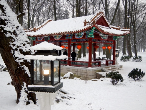 The Chinese Garden in Łazienki Park
