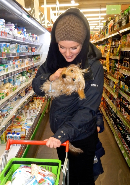 She smuggled this cute little dog into the supermarket!