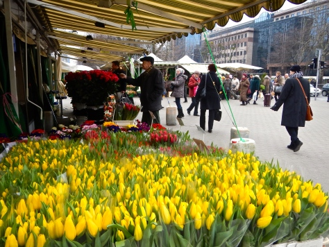 Tulips a plenty at Hala Mirowska flower market