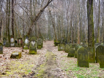 Pathway through the Jewish cemetery - eerily beautiful