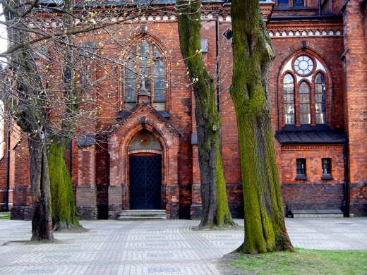 Beautiful moss covered trees at side entrance to the Church of St Michael the Archangel and St Florian the Martyr in Praga