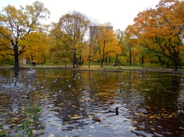 Park just near the Uprising monument - so peaceful and tranquil in Autumn colours
