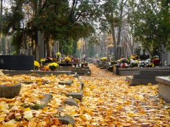 Warsaw cemetery with a spectacular carpet of golden Autumn leaves
