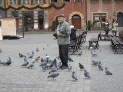 Old Town Market Place - beautiful older gentleman comes regularly to feed the pidgeons