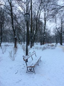 Park benches in Lazienki Park