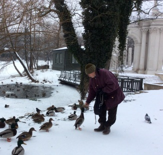 A lovely older gentleman ensuring the ducks do not go hungry in the cold