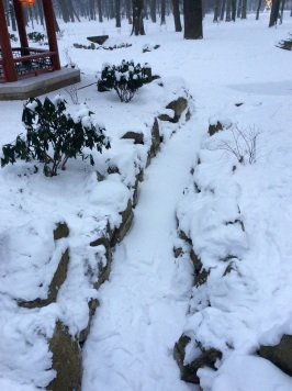 We are just loving the snow. - small stream near Chinese garden in Łazienki park