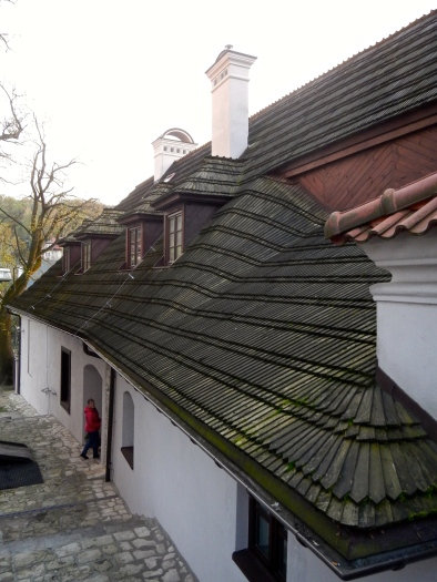 Beautiful wooden roof tiles on this old gem