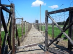 barbwire fences separate the 'fields' at Majdanek prison