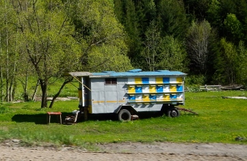 Very colourful mobile bee hives