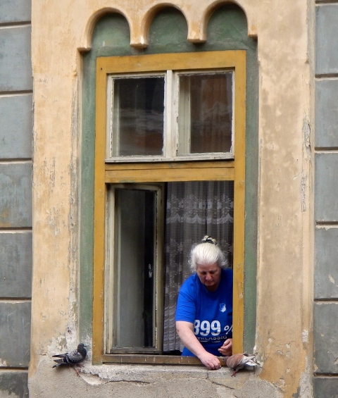 Loved this old lady feeding the pigeons on her window ledge