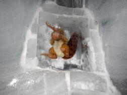 Prehistoric beast frozen in time :-}