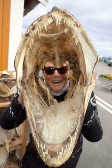 Finland - dried fish heads for sale - quite macabre