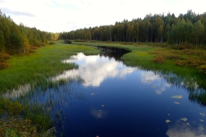 One of Finland's many, many lakes